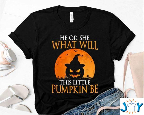 he or she what will this little pumpkin be shirt funny halloween party costume gift shirt M