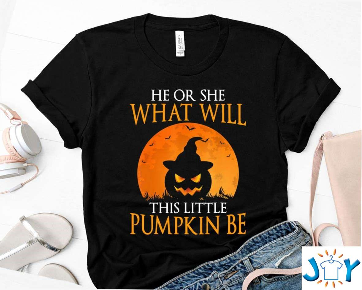 He Or She What Will This Little Pumpkin Be, Top Gender Reveal Pregnancy Funny Halloween Party Shirt